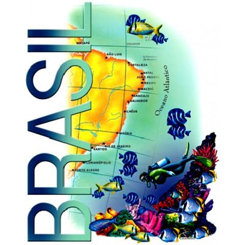 TRANSFER BRASIL ATLÂNTICO COM STRASS (064/263)