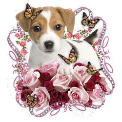 TRANSFER DOG ROSAS COM STRASS (713)