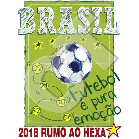 TRANSFER BRASIL PURA EMOÇÃO (672)