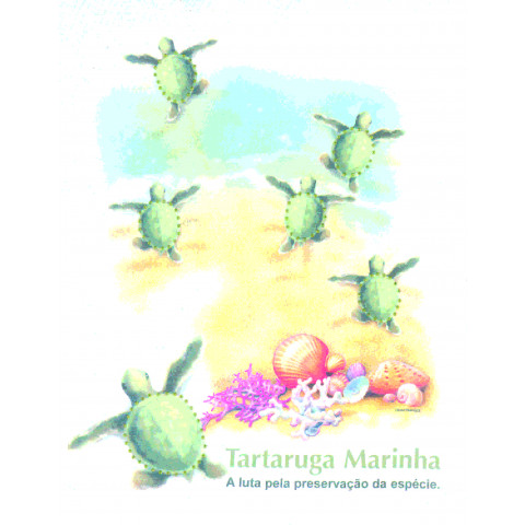 TRANSFER TARTARUGA MARINHA (485/760)