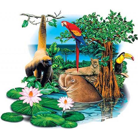 TRANSFER ANIMAIS AMAZÔNIA (016)