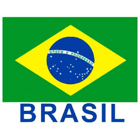 TRANSFER BANDEIRA BRASIL (871)