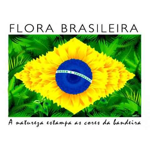 TRANSFER BANDEIRA BRASIL ESTILIZADA 3 (867)