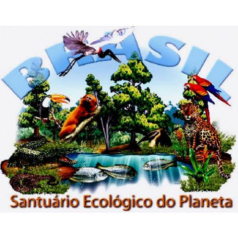 TRANSFER BRASIL SANTUÁRIO ECOLÓGICO (552)