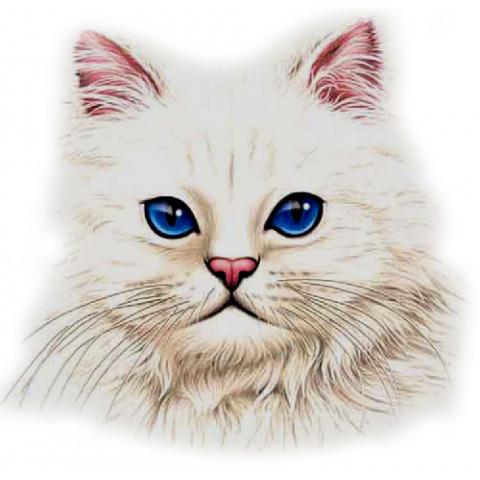 TRANSFER CAT FACE 1 (1073)