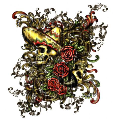 TRANSFER CAVEIRAS MEXICANAS (904)