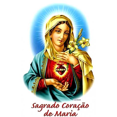 TRANSFER CORAÇÃO DE MARIA (501)