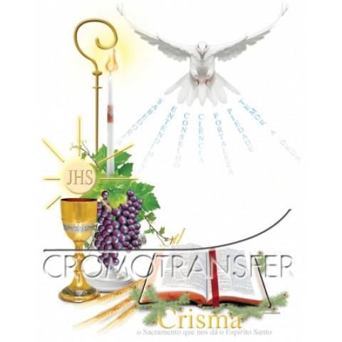 TRANSFER CRISMA (881)