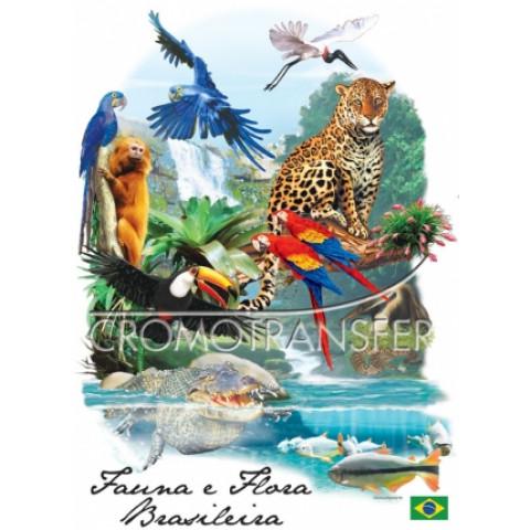 TRANSFER FAUNA E FLORA BRASILEIRA (999)
