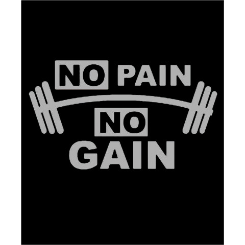 TRANSFER NO PAIN NO GAIN PRATA (032)