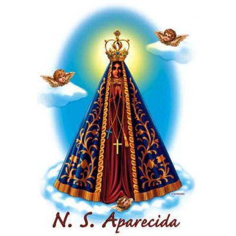 TRANSFER APARECIDA PEQUENA (34)