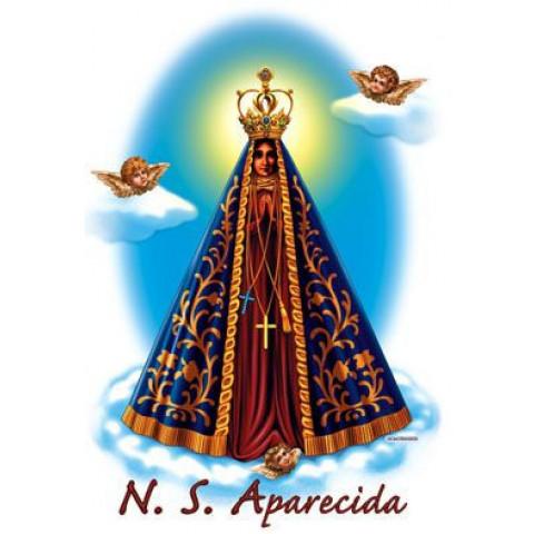 TRANSFER APARECIDA GRANDE (1216)