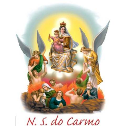 TRANSFER NOSSA SENHORA DO CARMO (489)