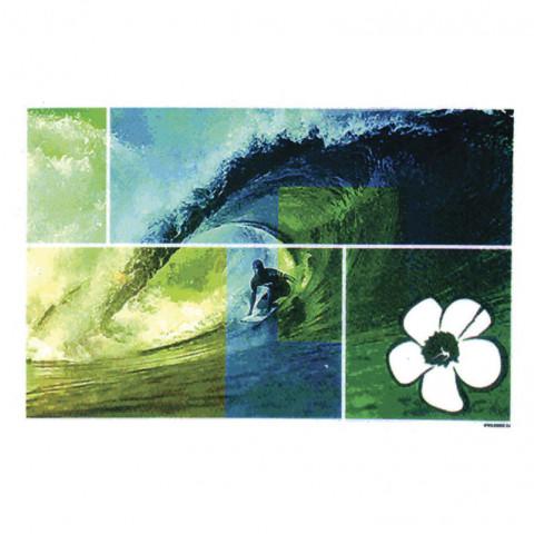 TRANSFER SURFER WAVE HIBISCO (1173)