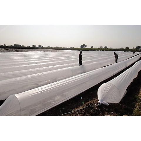 Plastico para Estufa tipo Tunel Cristal NORTENE 2,2X100 100 micras