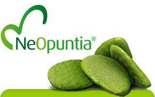 Composto Eliminador de Gorduras com NeOpuntia® e Chitosan (90 doses)