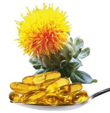 Pholia Magra + Óleo de Cártamo + Faseolamina (120 doses)