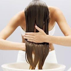 Shampoo Anti-queda com Extratos Naturais (100mL)