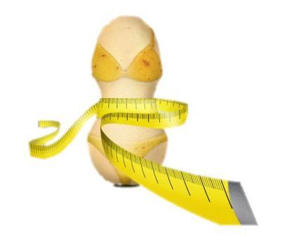 Slendesta® 150mg (60 cápsulas)