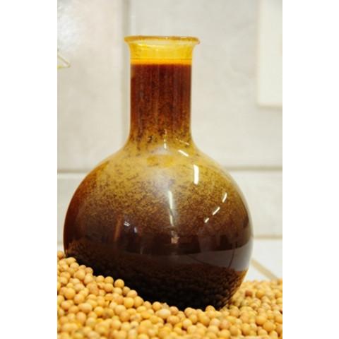 Lecitina de soja 1.000mg (120 doses)