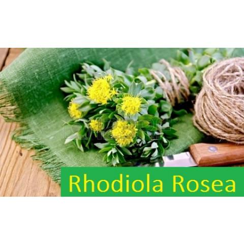 Rhodiola Rosea 150mg (120 cápsulas)